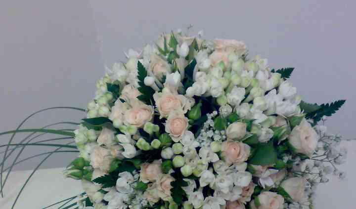 Bouquet boardia