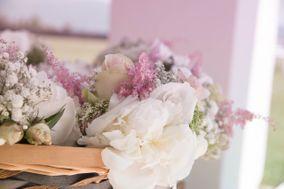 Stanghellini Floral Artist