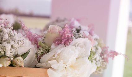 Stanghellini Floral Artist 1