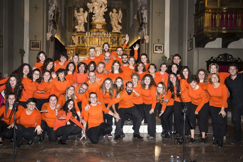 Siena Gospel Project 2017