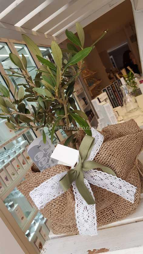 Bomboniere Matrimonio Bari.Bomboniere Vegetali Di Wed By Noemi Weddings Bari Foto 92