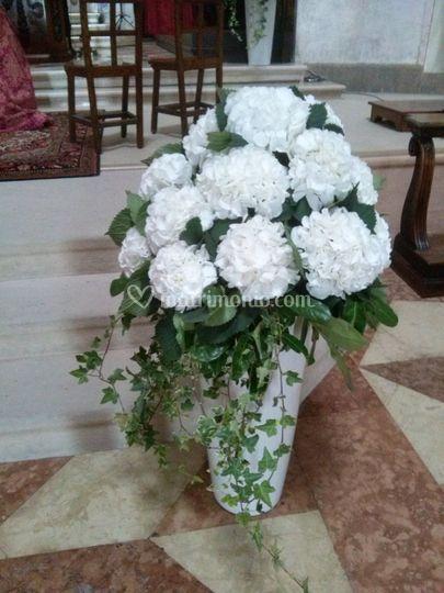 Lino fiori