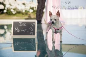 L&W Wedding Dog Sitter