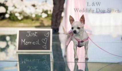 L&W Wedding Dog Sitter 1
