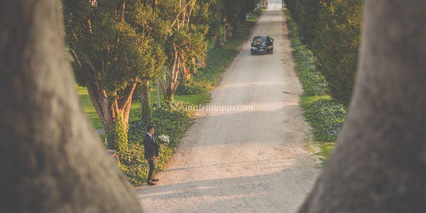 OneMoment Weddings