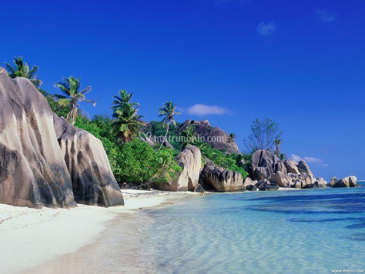 Fantastiche Seychelles!