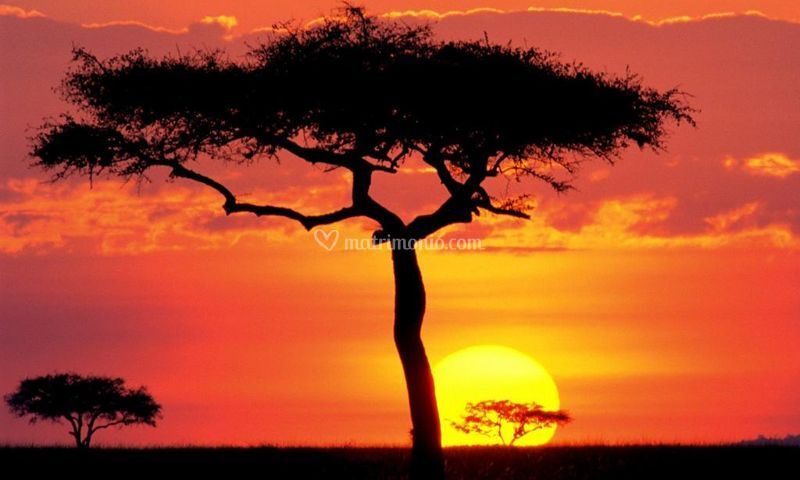 Il mal d'Africa esiste!
