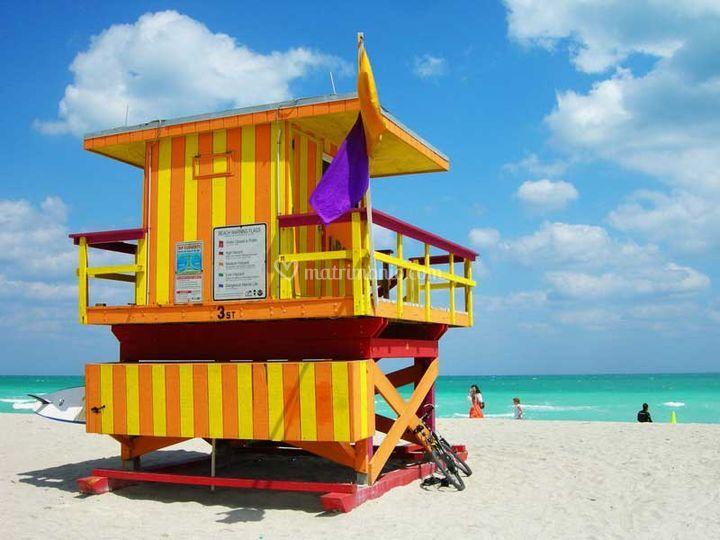 Miami style!