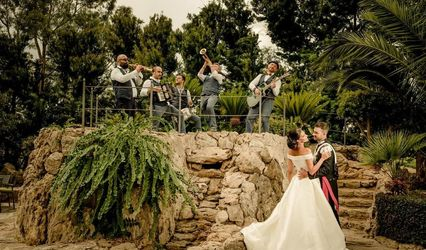 Marilena Angileri Wedding & More