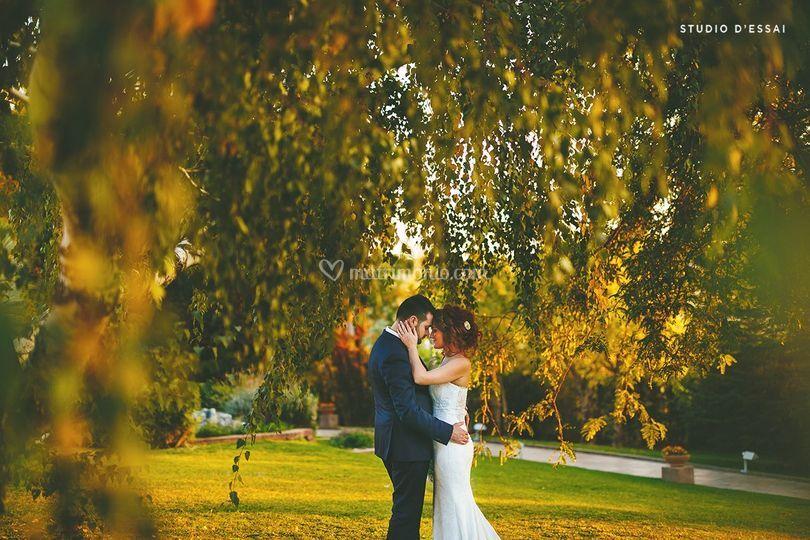 Studio d'Essai Wedding