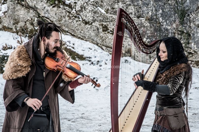 Duo/arpa e violino