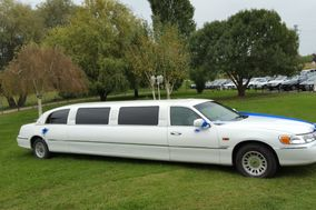 Torino in Limo