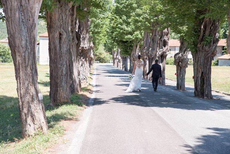 Viale Alberato Giusvalla