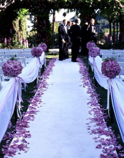 Tappeto bianco e petali di ros