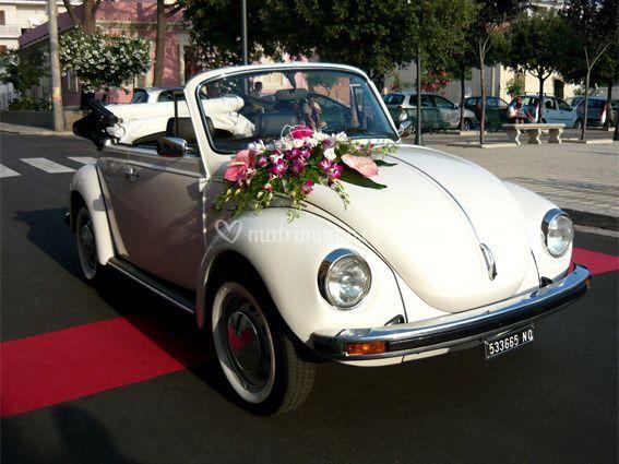 Maggiolino cabriolet bianco