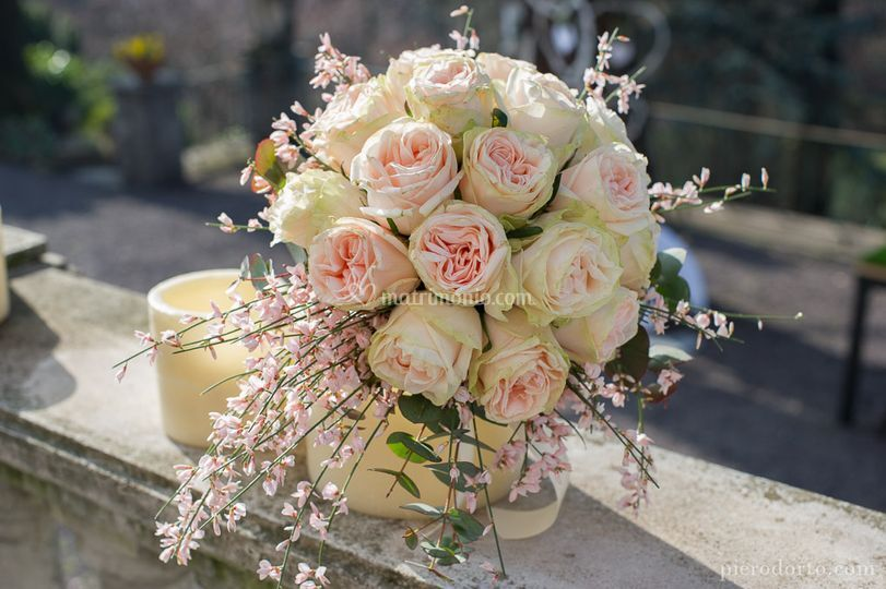 Bouquet Villa paradeisos