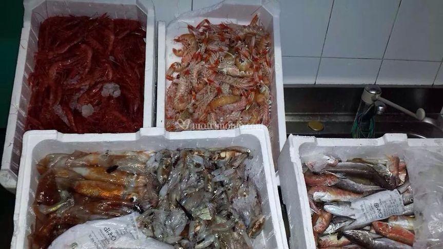 Soprattutto pescato locale