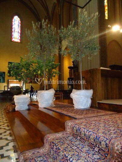 Pubblicazioni Matrimonio Romano Di Lombardia : Crea il verde