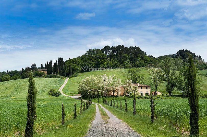 Vialetto per villa Gorgo