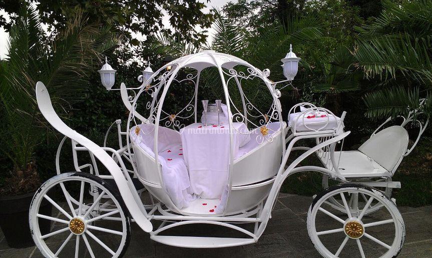 Matrimonio In Carrozza : Renoir noleggio carrozze