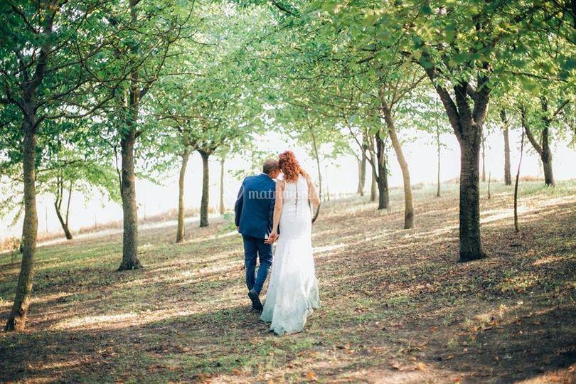 La Sposa Dipinta