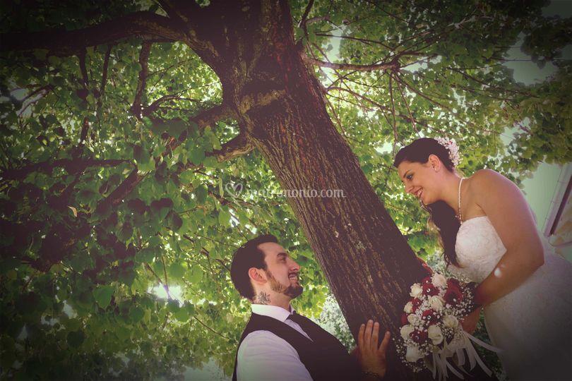 Sposi nel verde
