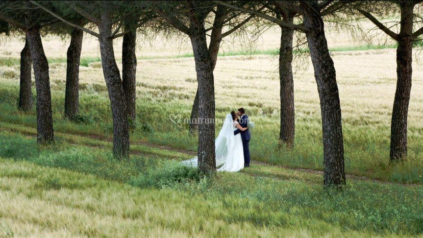 Wedding Alice e Alberto