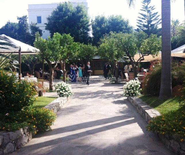 Ingresso giardino di hotel mediterraneo sorrento foto 4 - Ingresso giardino ...