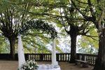 Arco Alice in wonderland