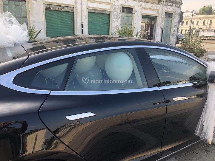 Model S_ballons