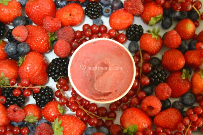 Frutti di sottobosco