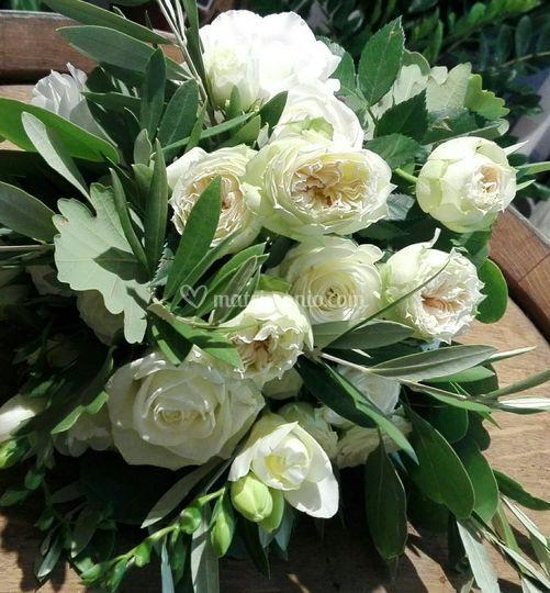 Bouquet olivo