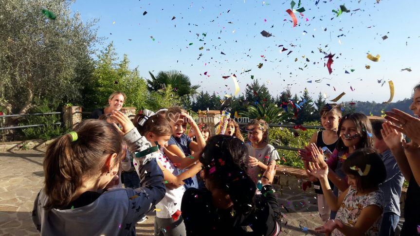Sos wedding tata confetti