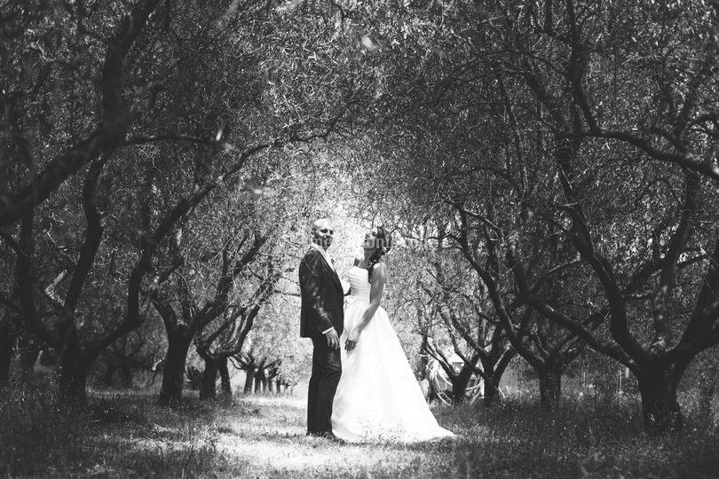 Frac - Wedding Photo e Cinema