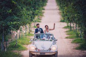 Ama Maggiolino Wedding