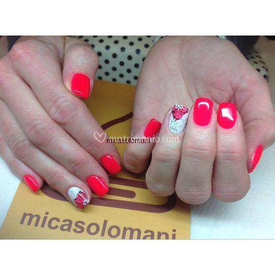 Micasolomani