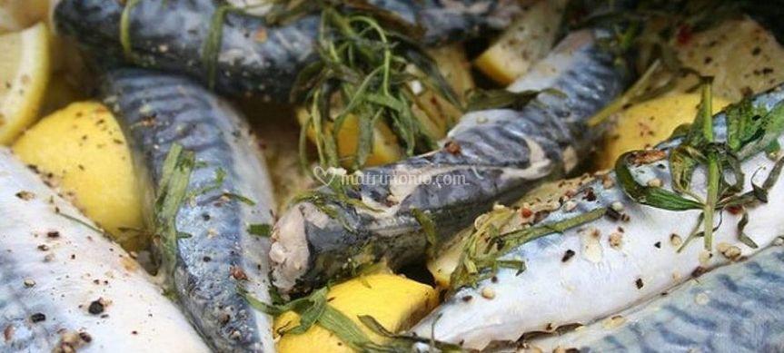 Cucina di mare di La Barcaccia | Foto 3
