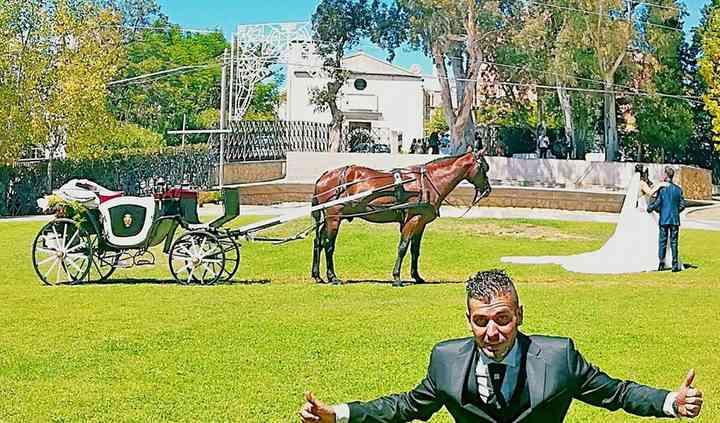 Bisignano Eventi a Cavallo