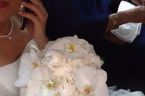 Esecuzione Verde Wedding