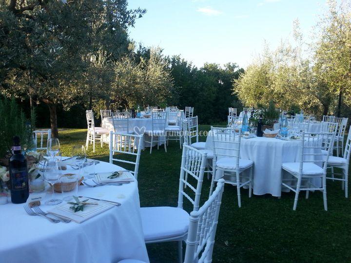 Cena in oliveta