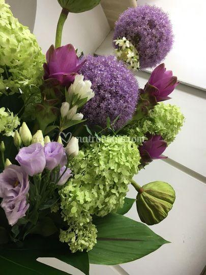 Invito ai fiori