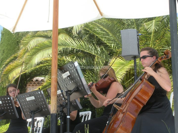 Cocktail Quartetto con sonorizzazione