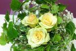 Dettagli floreali di I Fiori di Oxana