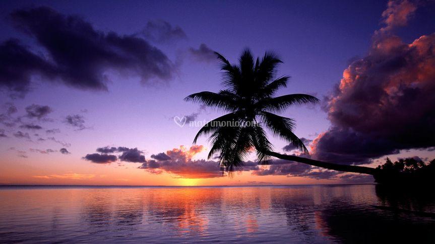 Moorea - Polinesia