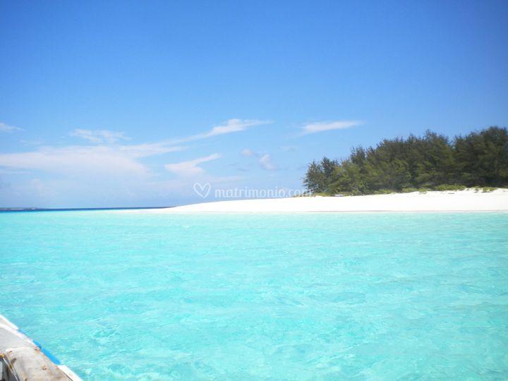 Verso l'atollo di Mnemba