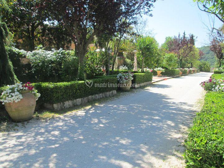 Il viale di Villa San Carlo