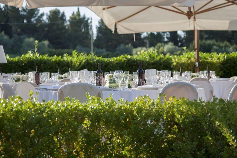 Locanda I Girasoli Matrimonio : Cena in esterno di locanda i girasoli foto