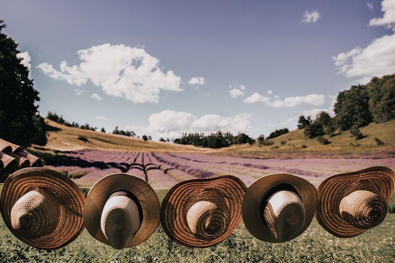 Tableau campo lavanda