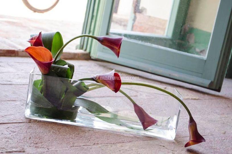 AZ flower designer