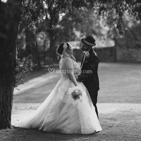 Wedding Photo Stories